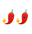 set a spicy chilli peppers vector image