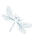 Sketched dragonfly vector image vector image