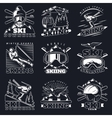 Ski Downhill Emblems Set vector image