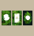 tropical leaves frames set vector image vector image