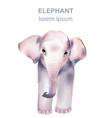 watercolor portrait a pink baby elephant