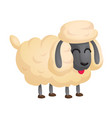 206sheep vector image vector image