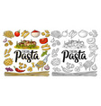 different types macaroni and italian pasta vector image vector image