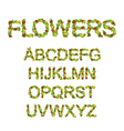 flowers font vector image