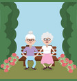 grandmothers couple on bench vector image