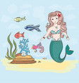 mermaid and fish rocks and seaweed shell vector image