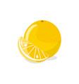 orange and orange slice farm fruit concept vector image