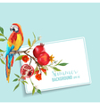 Tropical Flowers Pomegranates and Parrot Bird vector image vector image