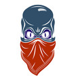 urban stylish skull logo or icon aggressive vector image