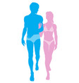 young couple in love in swimwear vector image