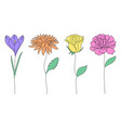 collection flowers vector image