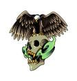 eagle mascot logo with skull vector image vector image