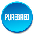 purebred blue round flat isolated push button vector image vector image