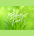spring time handwritten calligraphy lettering with vector image vector image