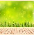 summer background with wooden deck wood floor vector image