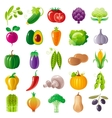 Vegetarian food icon set with organic fruits vector image vector image