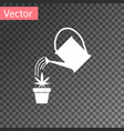white watering can sprays water drops above vector image vector image
