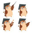 Owl lecture vector image