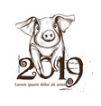2019 chinese pig year card line art vector image