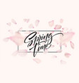 cherry blossom petal background with spring time vector image