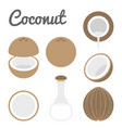 coconut icon vector image vector image