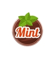 Mint Spice vector image vector image