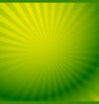colorful graphics with rays beams with radial vector image vector image