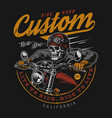 custom motorcycle vintage colorful label vector image
