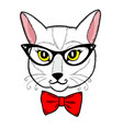 cute cat face on the white background vector image