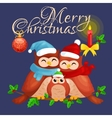 happy family of owls mom dad and baby in a warm vector image vector image