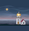 lighthouse tower and small house at night vector image