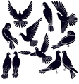 Silhouettes of pigeons that fly and sit vector image