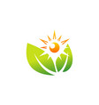 Sunlight and leaves logo symbol icon design