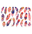 tribal feathers decorative ethnic stylize feather vector image