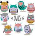 hand sketch owls colored vector image vector image