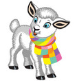 little lamb wearing a scarf vector image vector image