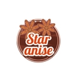 Star Anise Spice vector image vector image