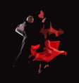 tango vector image vector image