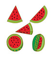 watermelon fruit template flat vector image