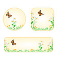 banner and buttons daisy with butterfly vector image vector image