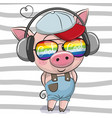 cute pig with sun glasses vector image
