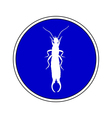 Earwig allowed vector image vector image