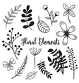 Hand drawn flowers and foliage elements vector image vector image