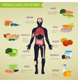 Products useful for the body Healthy eating vector image vector image