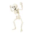 Sceleton vector image