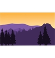 Silhouette or fir trees on the mountain vector image vector image