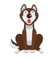 husky dog sits and looks up with open mouth vector image vector image