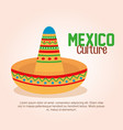 mexican culture traditional hat vector image vector image