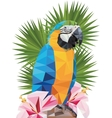 tropical triangular macaw parrot with vector image vector image