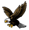 american bald eagle with open wings and claws in vector image vector image